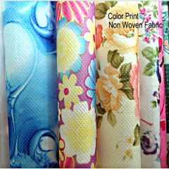 printing nonwoven fabric