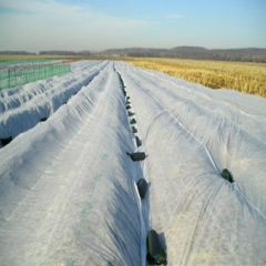 nonwoven fabric roll for agriculture